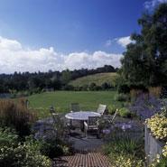 Large Modern Garden Design 1
