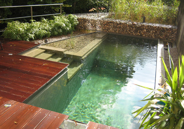 natural-swimming-pool-3