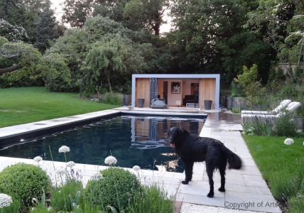Contemporary Garden Swimming Pool