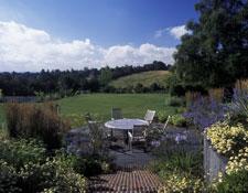 Large Garden 2
