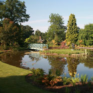 Large Modern Garden Design 2