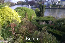 riverside garden - before